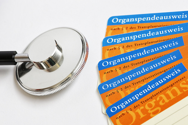 Stethoskop und mehrere Organspendeausweise